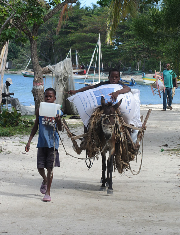 Food aid still pours in to Haiti