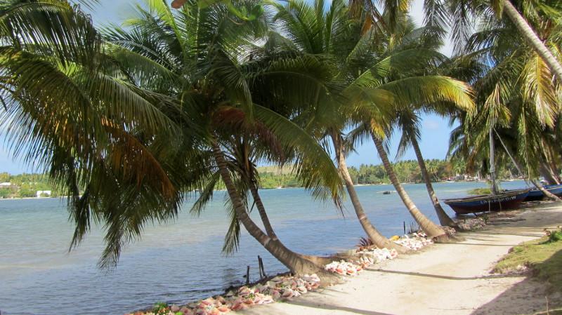 Haiti, a paradise spoilt
